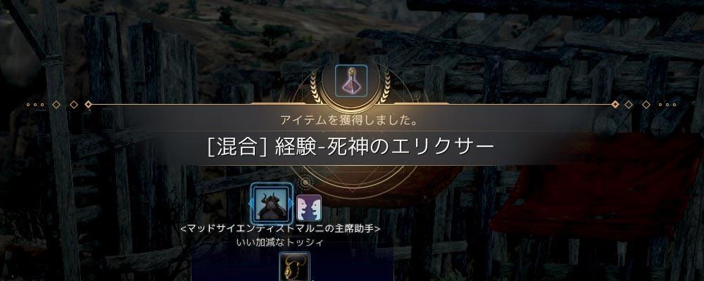 経験-死神のエリクサー