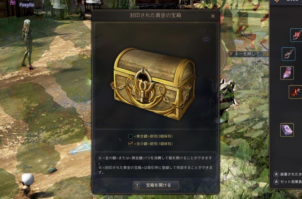 【クリオの頼み事イベント】封印された黄金の宝箱の中身