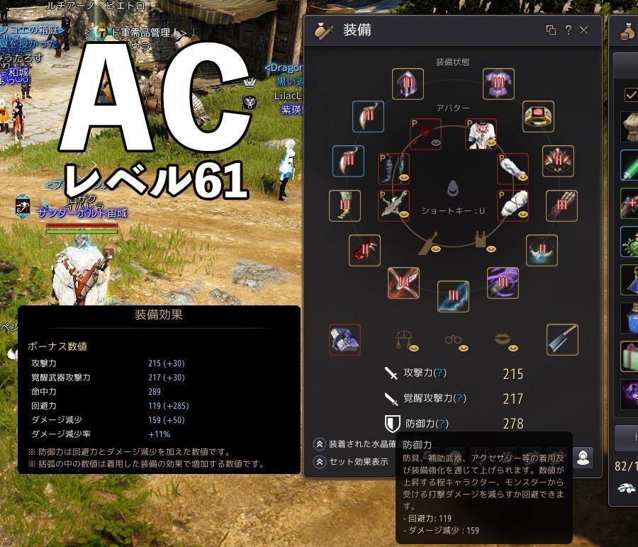 『アーチャー』レベル61の装備【黒い砂漠】